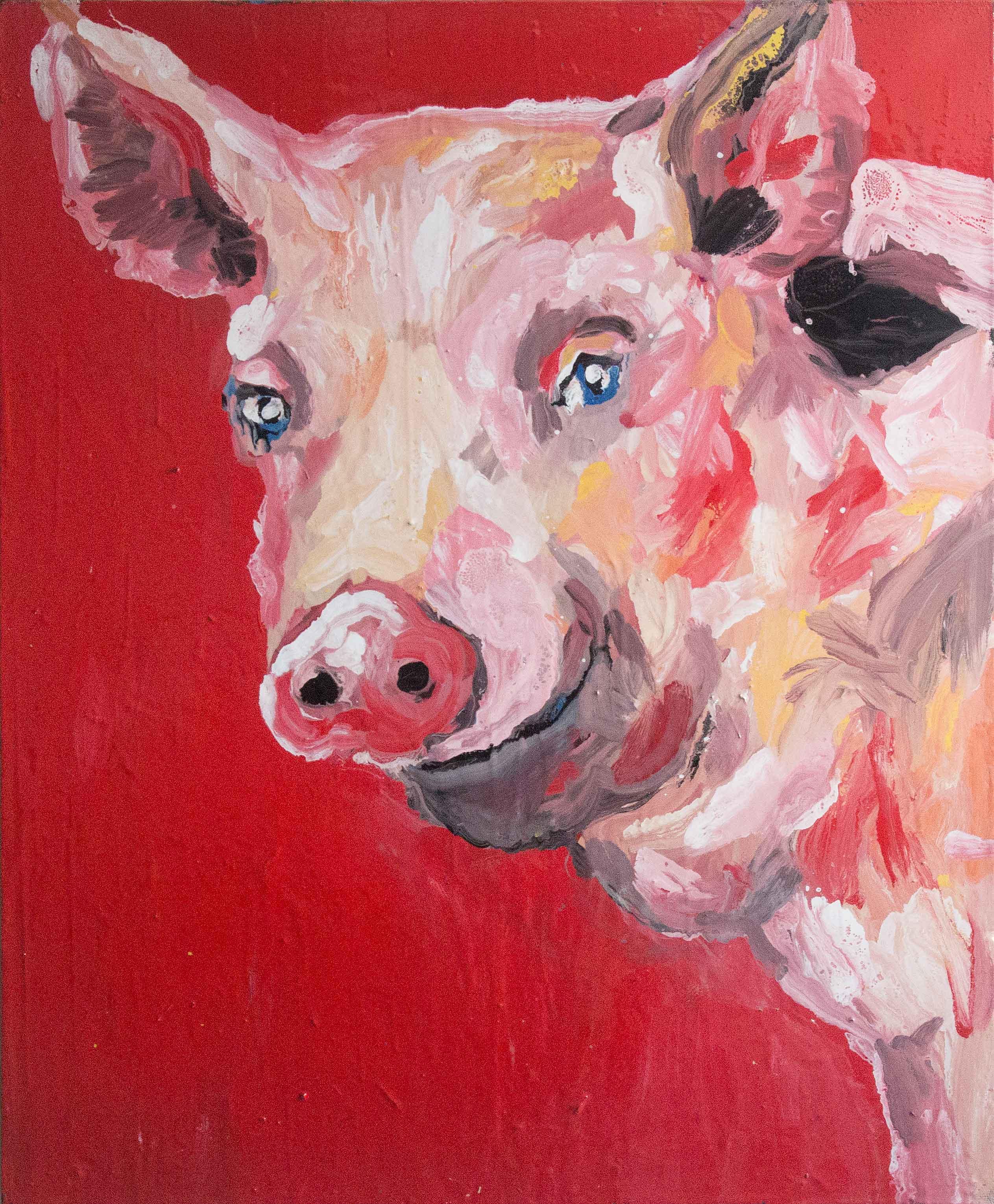 Le-sourire-du-cochon