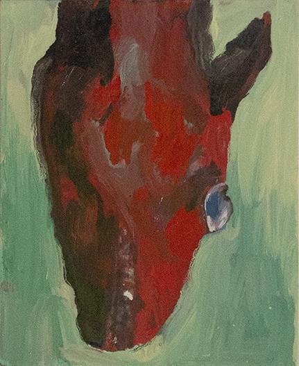 Tete de cheval ecorche